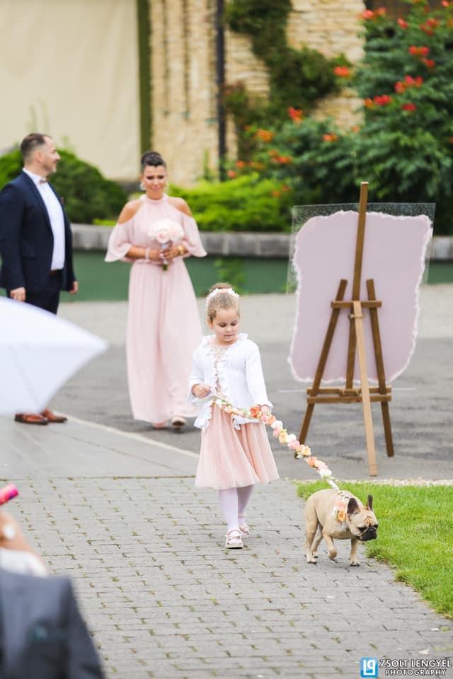 Esküvő Nyírtasson a Magyar talléros Pálinkás rendezvényházban. Ceremóniamester Barna László